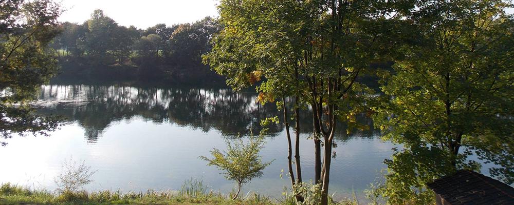 Die Anlage am Waldsee